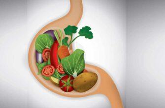 Как улучшить пищеварение в желудке народными средствами