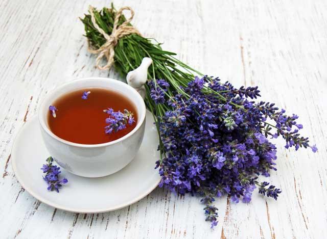 Лавандовый чай в народной медицине