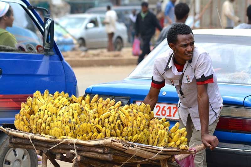 Бананы полезные свойства
