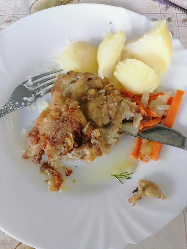 Рецепты блюд из мяса курицы